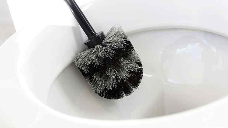 brosse toilette