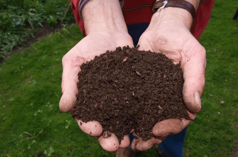 Achat composteur domestique – Nos avis et conseils